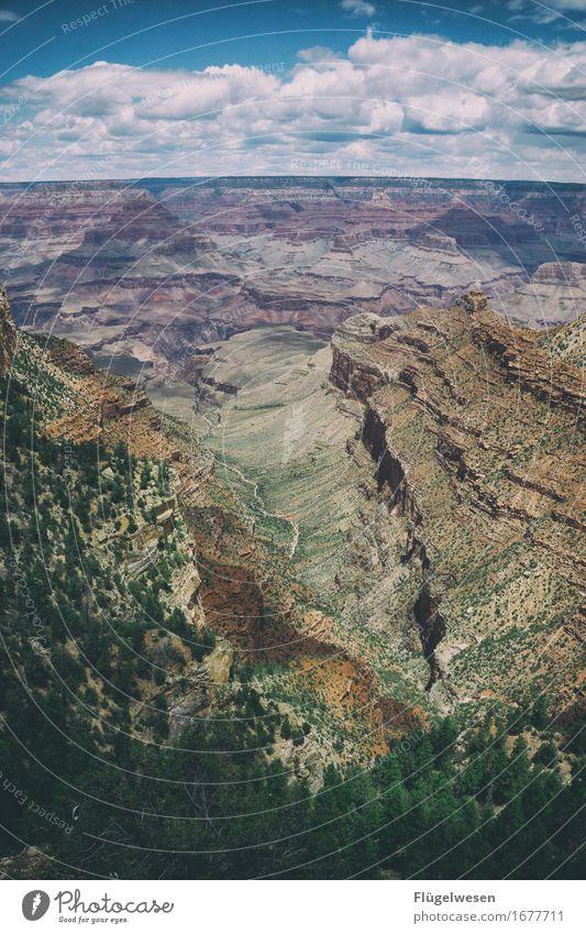 Grand Canyon Himmel Ferien & Urlaub & Reisen Sommer Wolken Wald Berge u. Gebirge Straße Wärme Freiheit Felsen Aussicht Neugier Hügel USA entdecken Wüste