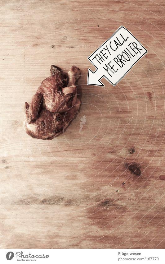 """Wir aus den """"neuen"""" Bundesländern sagen Broiler! Farbfoto Innenaufnahme Fleisch Ernährung Tier Haustier Totes Tier Vogel Taube Fressen broiler DDR Ostalgie"""