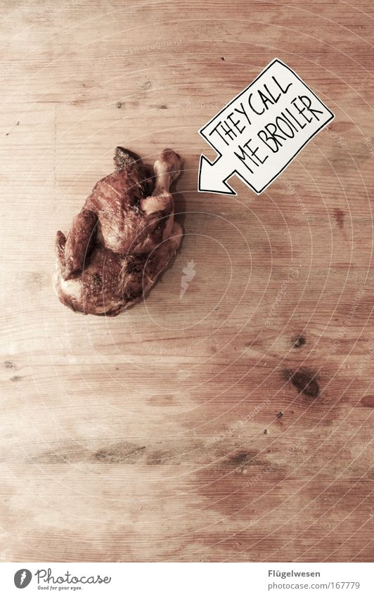 """Wir aus den """"neuen"""" Bundesländern sagen Broiler! Tier Ernährung Vogel Lebensmittel Geflügel Fressen DDR Haustier Fleisch Taube Ostalgie Totes Tier"""