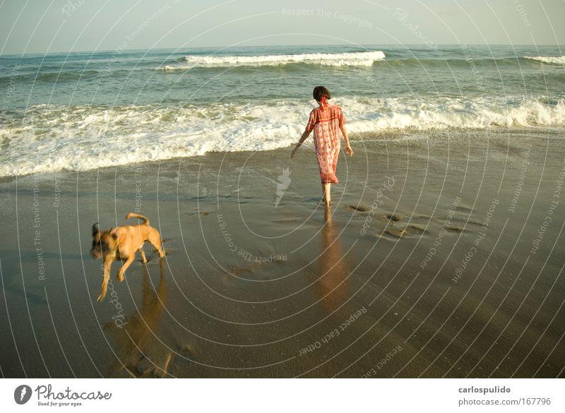 Farbfoto Außenaufnahme feminin Frau Erwachsene 1 Mensch Natur Strand Wellen mediterran Andalusien Marbella Spanien