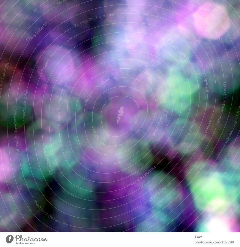 Der Duft von Lila und Türkis ... Sommer Traurigkeit Spielen träumen violett Fleck Rausch Zauberei u. Magie mystisch blenden Muster Blendenfleck Blendeneffekt