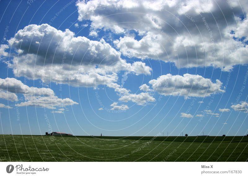 weites Land Himmel Natur Ferien & Urlaub & Reisen Sonne Sommer Wolken ruhig Ferne Erholung Umwelt Landschaft Freiheit Gras Wind Feld laufen