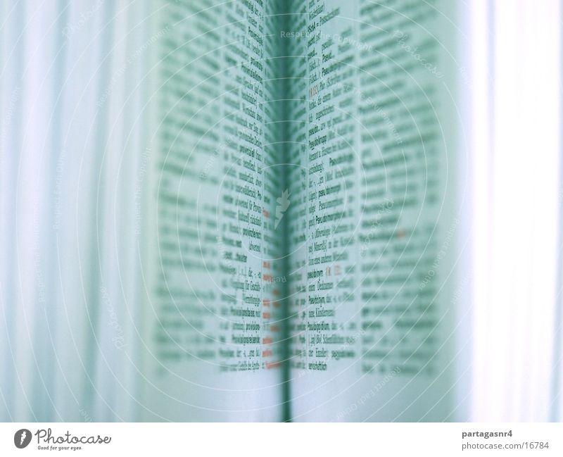 offenes Buch alt blau weiß modern Papier Schriftzeichen Kultur lesen einfach Neugier Zeichen entdecken Dienstleistungsgewerbe Seite