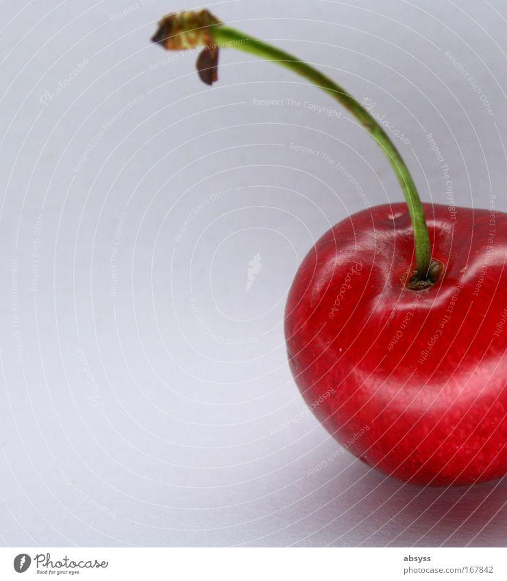Taste of Summer rot Ernährung Lebensmittel Frucht Bioprodukte