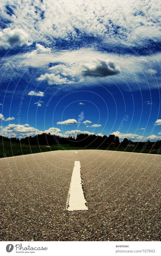 Strassenstrich Himmel blau Sommer Wolken Straße grau Ausflug Perspektive fahren Verkehrswege Waldrand Markierungslinie