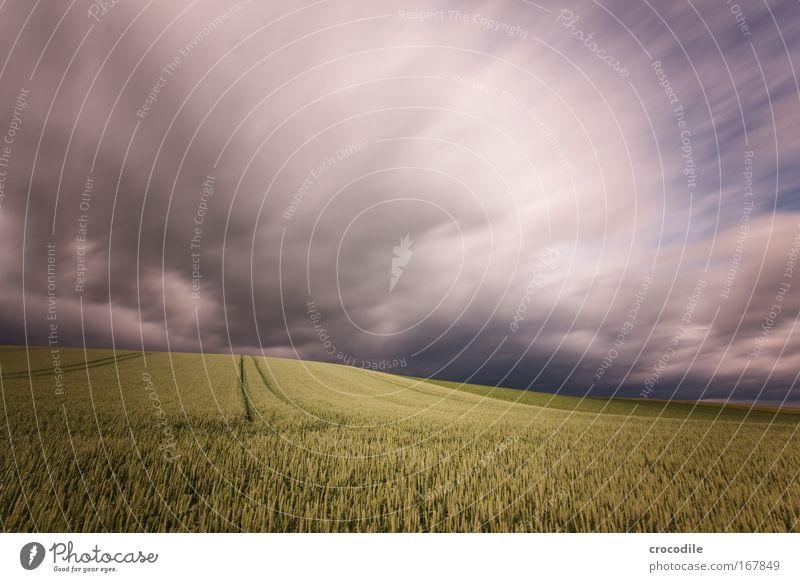 wolkenfetzen VI Farbfoto Außenaufnahme Menschenleer Abend Schatten Kontrast Bewegungsunschärfe Starke Tiefenschärfe Zentralperspektive Weitwinkel Umwelt Natur