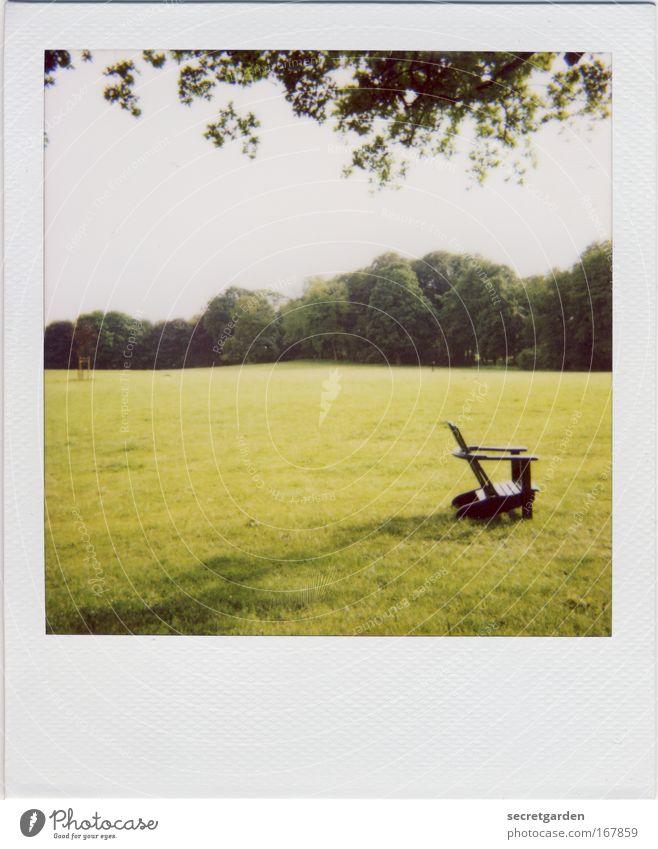 [HH09.3/4] fünf meter vor dem stuhl im gras Farbfoto Gedeckte Farben Außenaufnahme Polaroid Menschenleer Textfreiraum links Textfreiraum unten