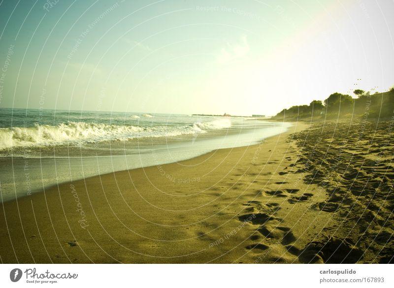 Gedeckte Farben Außenaufnahme Menschenleer Tourismus Ausflug Sonne Strand Wellen Küste Meer Sand Ferien & Urlaub & Reisen Marbella Spanien Andalusien