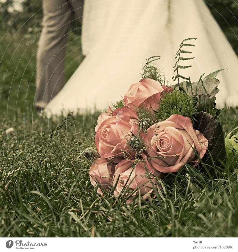 hochzeitstag Farbfoto Gedeckte Farben Außenaufnahme Tag Unschärfe Froschperspektive Feste & Feiern Hochzeit Blume Gras Rose Wiese liegen ästhetisch Duft elegant
