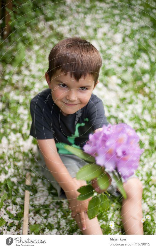 Blüten Kind Kleinkind Junge Bruder Kindheit 1 Mensch 3-8 Jahre Natur Frühling Freude Glück Fröhlichkeit Warmherzigkeit Sympathie Freundschaft Zusammensein Liebe