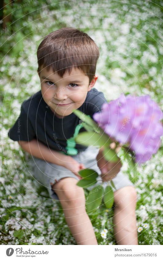 für dich Mensch Kind Natur Blume Freude Leben Blüte Frühling Wiese Junge Familie & Verwandtschaft Glück sitzen Kindheit Fröhlichkeit Lebensfreude
