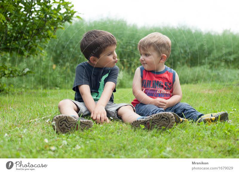 Brüder Mensch Kind Natur Pflanze Freude Leben Liebe Frühling Wiese Junge Familie & Verwandtschaft Glück Garten Zusammensein Freundschaft Kindheit
