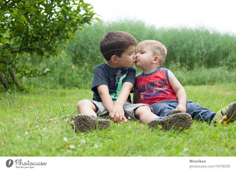 Geschwister Mensch Kind Freude Leben Liebe Gefühle Wiese Junge Glück Garten Feld Kindheit Fröhlichkeit Lebensfreude Warmherzigkeit Küssen
