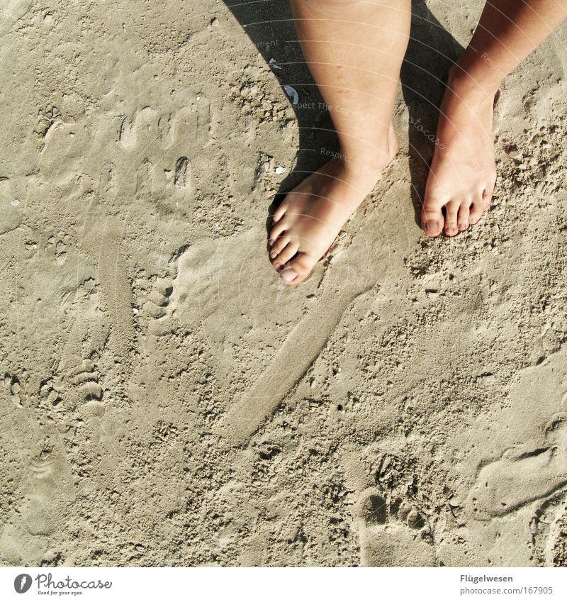 Strand am Fuß Meer Sommer Ferien & Urlaub & Reisen Sand Beine Zufriedenheit Erde Wellness Tourismus Wüste Lebensfreude berühren Sonnenbad Seeufer