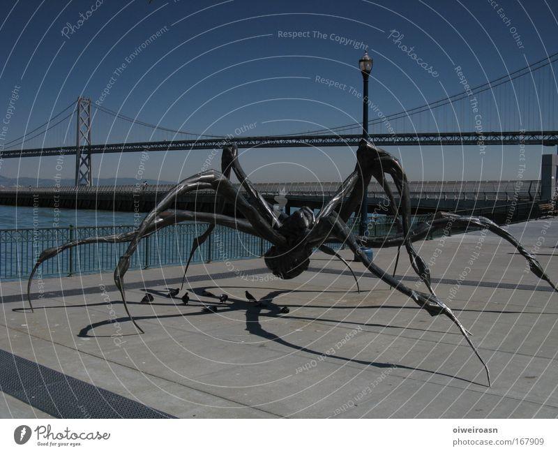 cityspider dunkel Metall Kunst Brücke bedrohlich Stahl Nacht Skulptur Sehenswürdigkeit Kunstwerk Hafenstadt
