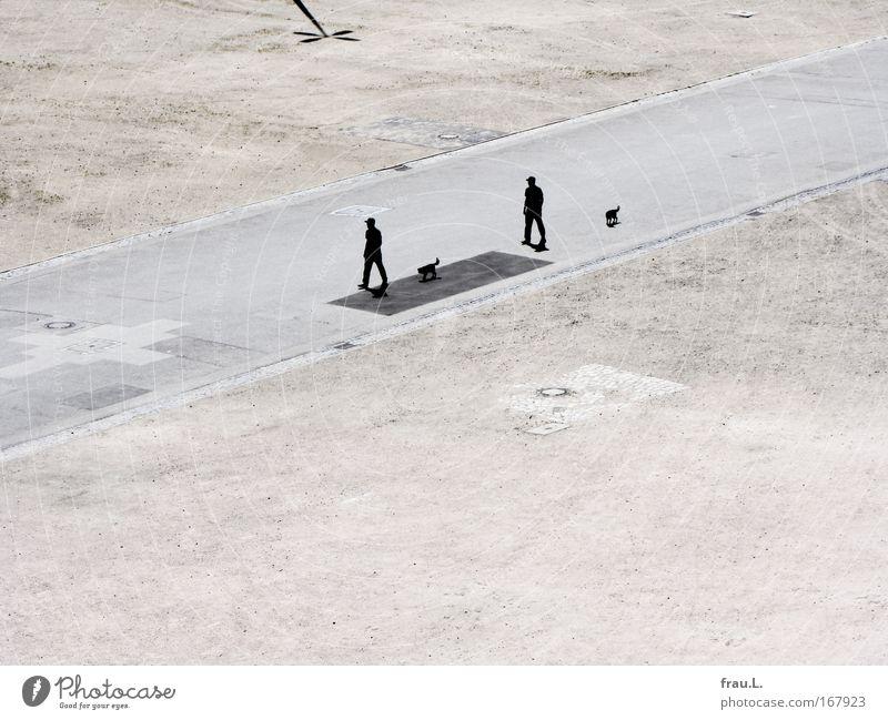 2 x 2 Mensch Mann Tier Einsamkeit Erwachsene Hund Wege & Pfade Paar gehen Platz maskulin paarweise trist Spaziergang 18-30 Jahre Schönes Wetter