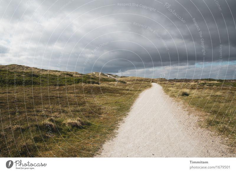 Da kommt was! Ferien & Urlaub & Reisen Umwelt Natur Landschaft Himmel Wolken Düne Dünengras Dänemark Wege & Pfade bedrohlich grau grün Gefühle Ferne unterwegs