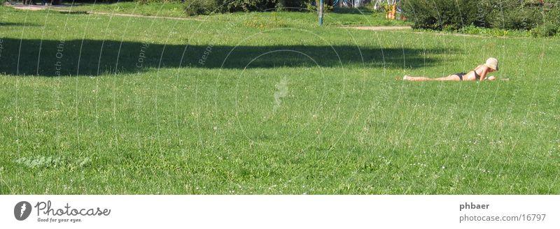 Bauchlage im Herrngarten Frau lesen Bikini Darmstadt Park grün Pflanze Gras Wiese Licht Freiraum Hut Natur Rasen Erholung Sonne Schatten liegen