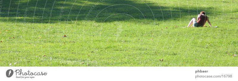 Sitzend im Herrngarten Frau lesen Rückseite Darmstadt Park grün Pflanze Gras Wiese Licht Freiraum sitzen Rücken Natur Rasen Erholung Sonne Schatten