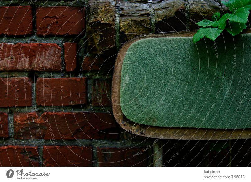 Freisitz Natur grün Pflanze rot ruhig Blatt Erholung Wand Garten Mauer Wohnung Stuhl Freizeit & Hobby Häusliches Leben Vergänglichkeit Restaurant