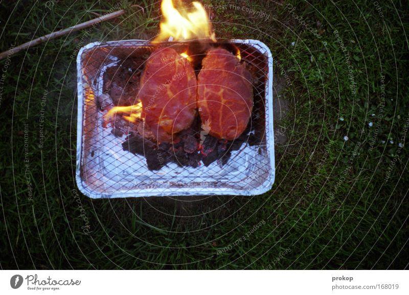 Burn Motherfucker Burn Farbfoto Außenaufnahme Menschenleer Abend Dämmerung Starke Tiefenschärfe Vogelperspektive Lebensmittel Fleisch Ernährung Abendessen