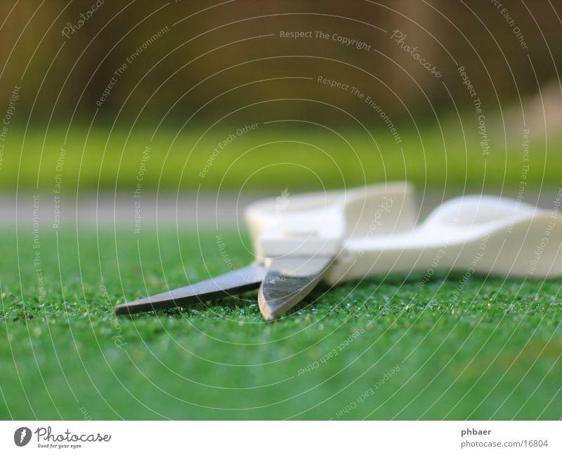 Offene Schere Rasensession Griff weiß geschnitten Kunstrasen Gras grün Tiefenschärfe Dinge offen Ecke Haarschnitt Makroaufnahme Nahaufnahme Klinge
