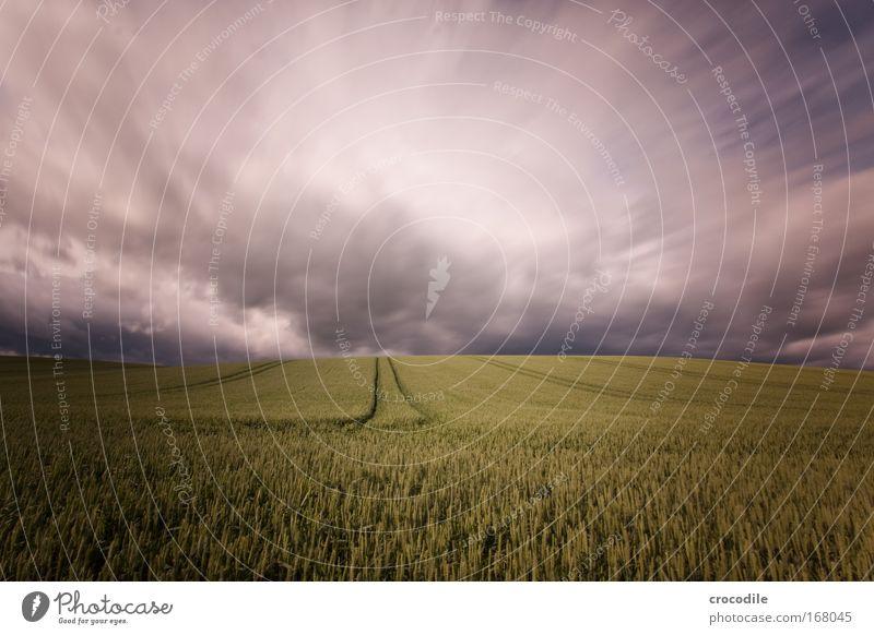 wolkenfetzen VII Natur Himmel Pflanze Sommer Wolken Landschaft Luft Feld Angst Wind Wetter Umwelt gefährlich Klima Sturm Hügel