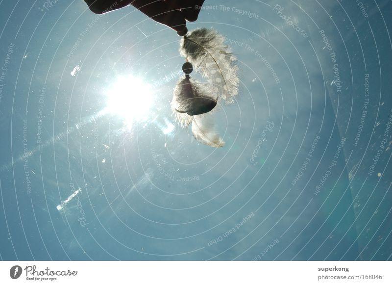 Trash Farbfoto Luftaufnahme Experiment Tag Licht Sonnenlicht Zentralperspektive Federn fahren authentisch dreckig einfach glänzend einzigartig trashig weich