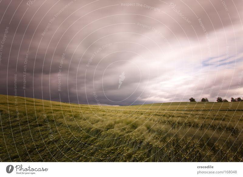 wolkenfetzen VIII Natur Himmel Baum Pflanze Sommer Wolken Bewegung Landschaft Stimmung Feld Wind Umwelt gefährlich Klima Hügel Stress