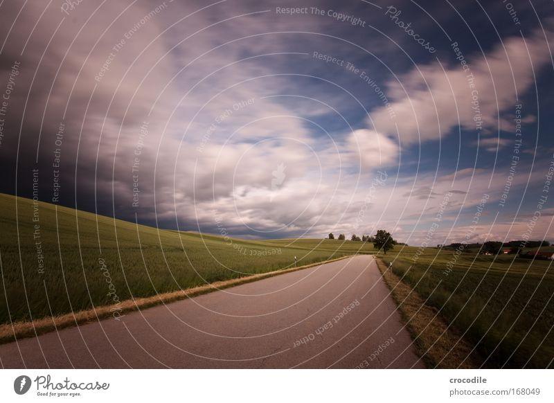 wolkenfetzen IX Natur Himmel Baum Pflanze Sommer Wolken Straße Gefühle Wege & Pfade Landschaft Zufriedenheit Stimmung Feld Wind Wetter Umwelt