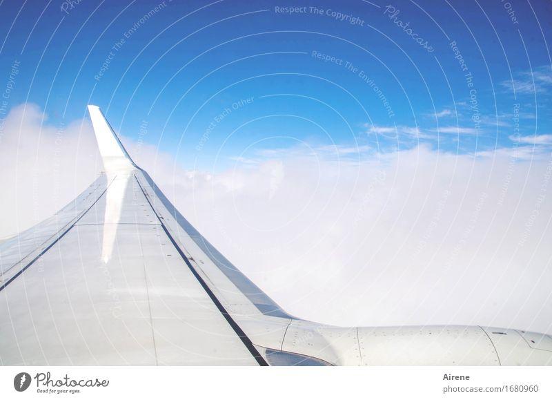 blaumachen | grau unten lassen Himmel Ferien & Urlaub & Reisen weiß Wolken Ferne fliegen oben Metall Tourismus Wetter glänzend frei elegant Luftverkehr