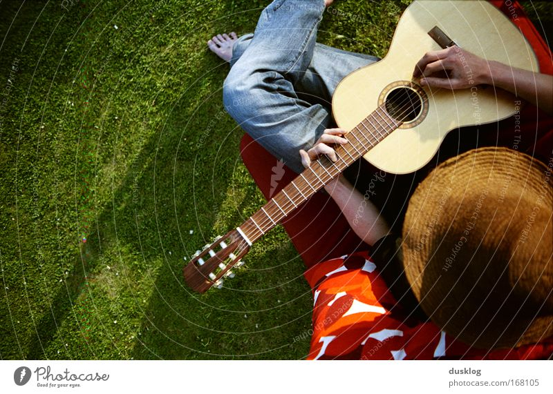 Finn Farbfoto mehrfarbig Außenaufnahme Sonnenlicht Vogelperspektive Freude Freizeit & Hobby Sommer Insel Mensch maskulin 1 Musik Gitarre Wiese Holz Musik hören