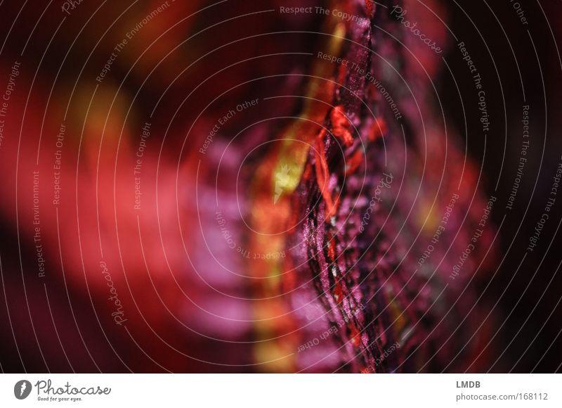 fabric rot Bekleidung Streifen Stoff weich zart violett Konzentration Tiefenschärfe fein Schal Sinnesorgane Seide Muster