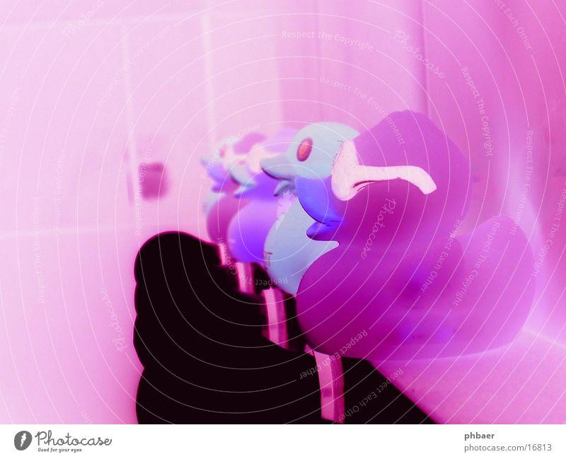 Badezimmer durch die rosa Brille Gummi Sonnenbrille Lampe negativ Ente Reihe Wiederholung Kitsch Farbstich