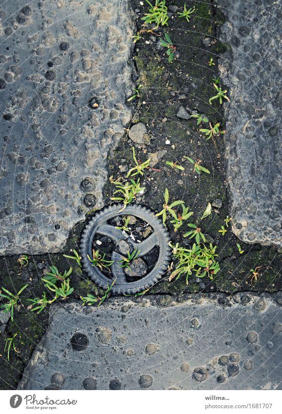 revolverrädchen | AST9 Zahnrad grau Steinplatten Sandstein Loch Boden Halm Rad Farbfoto Außenaufnahme
