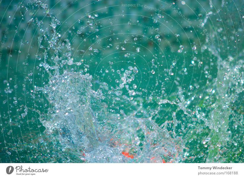 Splash Starke Tiefenschärfe Wellness Sommer Schwimmbad Wasser Wassertropfen springen tauchen kalt nass Bewegung spritzen Erfrischung deutlich Dynamik