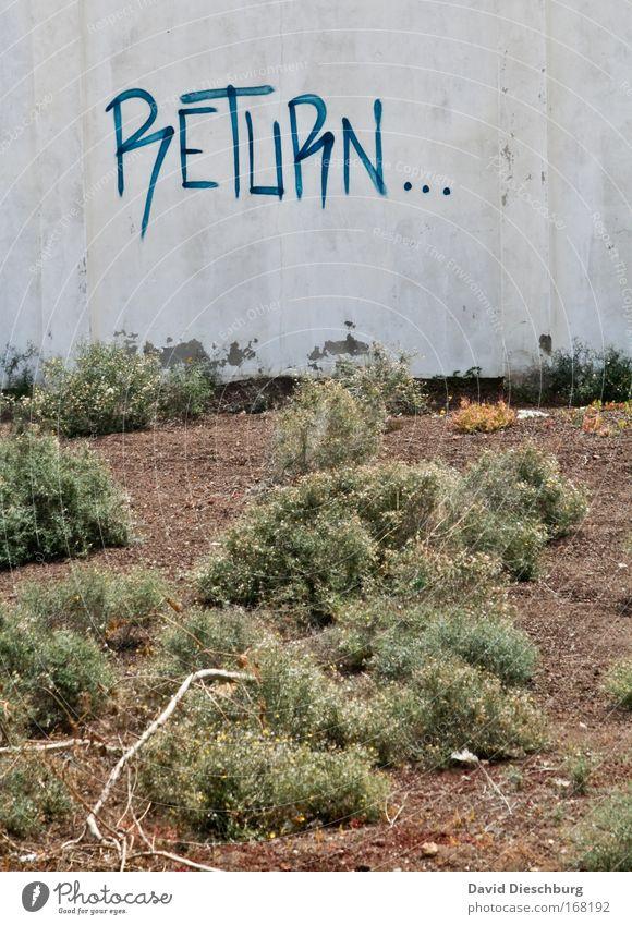 Alles auf Anfang Farbfoto Außenaufnahme Tag Kontrast Zentralperspektive Pflanze Gras Beton Schriftzeichen zurück Wand Mauer Wort Englisch Typographie