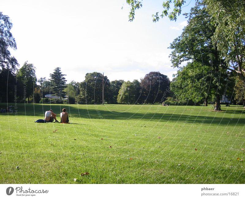Grüne Lunge Darmstadt Park grün Pflanze Baum Gras Wiese Blatt Mann maskulin Frau 2 ruhig Zusammensein sprechen Herrngarten Natur Rasen Himmel Erholung Sonne