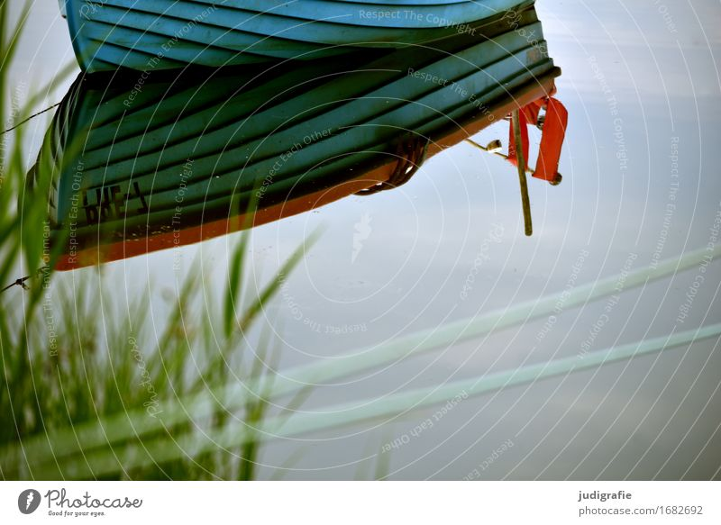 Hafen Umwelt Natur Wasser Himmel Küste Ostsee Teich See Fischerboot Motorboot Ruderboot Wasserfahrzeug Jachthafen blau Stimmung Idylle ruhig stagnierend