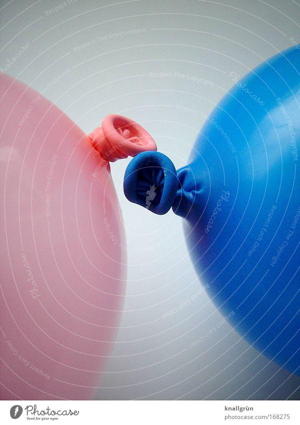 Begegnung weiß blau Zusammensein glänzend rosa Luftballon rund Kontakt berühren Nahaufnahme Partnerschaft Zusammenhalt Knoten begegnen aufgeblasen