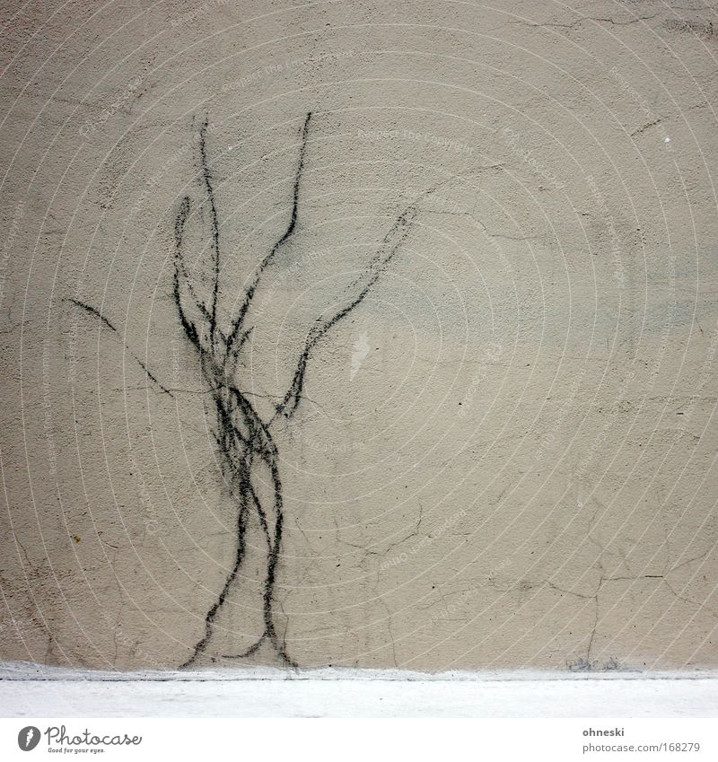 Baum Baum Haus Wand Mauer Fassade trist Zeichen Riss Zeichnung
