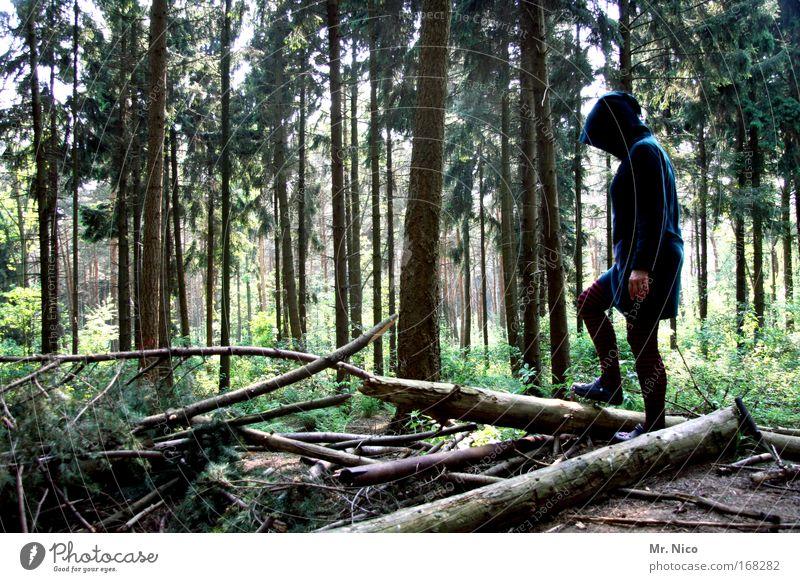 sMARAgda Natur Baum Einsamkeit Wald feminin Zufriedenheit Zeit Frieden entdecken Mütze Baumstamm Mantel Fabelwesen mystisch Märchen Kapuze
