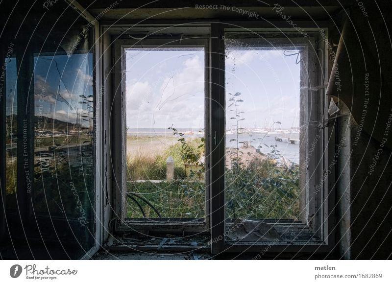 Transzendenz I Ferien Landschaft Pflanze Himmel Sommer Schönes Wetter Gras Kleinstadt Menschenleer Haus Ruine Fenster alt dunkel blau grau grün schwarz