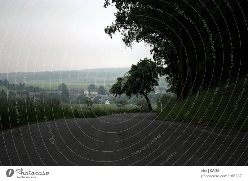 Open Road Farbfoto Außenaufnahme Experiment Menschenleer Textfreiraum unten Hintergrund neutral Silhouette Lichterscheinung Schwache Tiefenschärfe