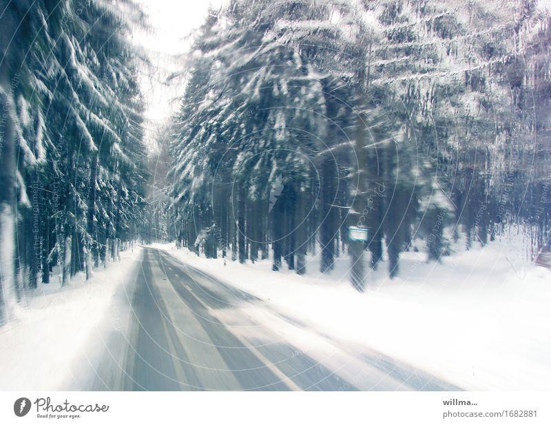 nur heute im angebot - abkühlung auf der flucht! Winter Eis Frost Schnee Nadelbaum Nadelwald Wald Verkehrswege Autofahren Landstraße kalt Fluchtpunkt