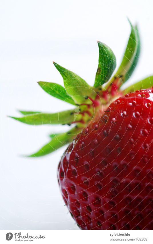 sooooo lecker! weiß grün rot Leben Gesundheit Frucht frisch süß Appetit & Hunger Samen exotisch Erdbeeren saftig Bildausschnitt Fruchtfleisch