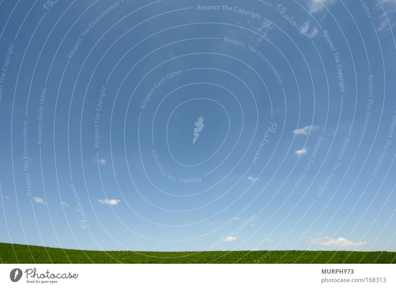 Das Blau des Himmels und das Grün des Grases... grün blau Wiese Landschaft Luft Horizont Erde Schönes Wetter Grasland Blauer Himmel himmelblau Himmelszelt