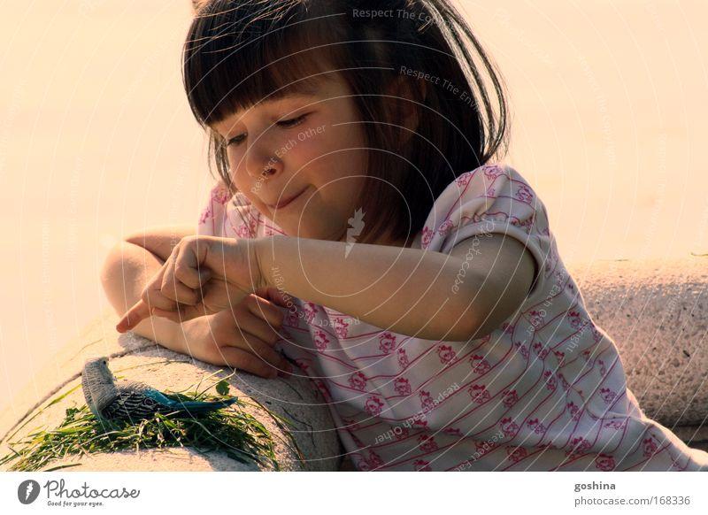 Hallo Du! Farbfoto mehrfarbig Außenaufnahme Tag Licht Zentralperspektive Porträt Oberkörper Halbprofil Blick nach unten Freude Glück Freizeit & Hobby Spielen