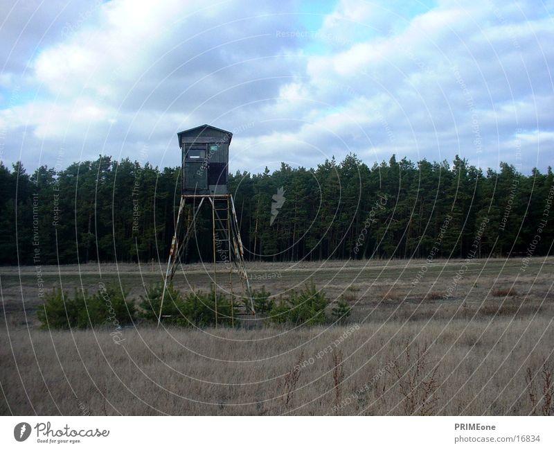 Jägerstand Natur Jagd Hütte