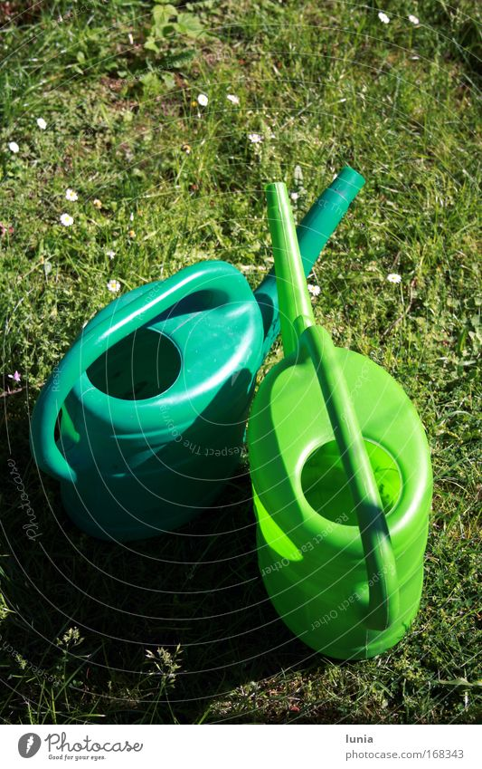 Grüne Gießkannen Wiese Garten Sportrasen Kunststoff Lust
